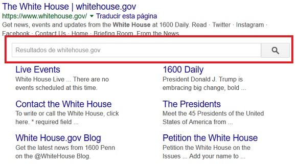 Google nositelinkssearchbox metatag